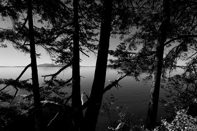 Chuckanut Drive Photo